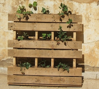 pallet-planter-1