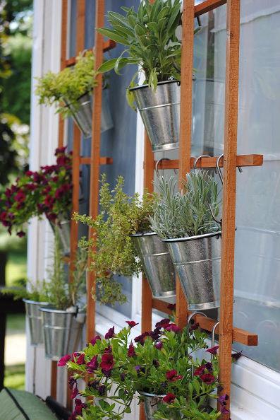 Trellis-Vertical-Garden